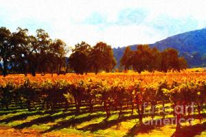 Napa Valley Vineyard in Autumn Colors 2 . by wingsdomain.com