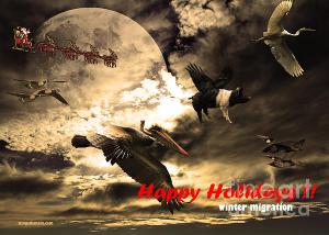 Wingsdomain.com Releases Annual Holiday Christmas Card . Happy Holidays . Winter Migration