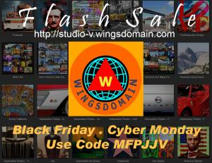 Black Friday Cyber Monday Flash Sale By Wingsdomain Art And Photography