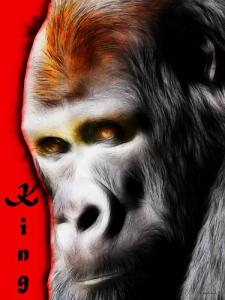 Wingsdomain.com Has Released An Exciting New Original Photo Artwork Titled The Silverback Gorilla . King Of The Jungle
