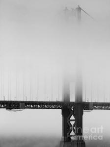 Wingsdomain Thanks Art And Photo Collector From West Chicago IL Who Purchased A Fine Art Gliclee Print Of Fog At The Golden Gate Bridge . Black And White