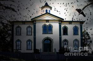 Night Of The Birds . Revisiting Alfred Hitchcock . By Wingsdomain.com Art And Photography