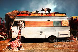 RV Trailer Park By Wingsdomain Art And Photography